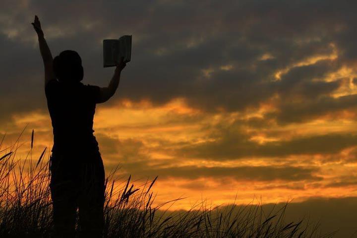 woman holding bible in woods praying