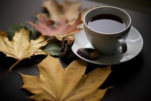 coffee cookie and leaves